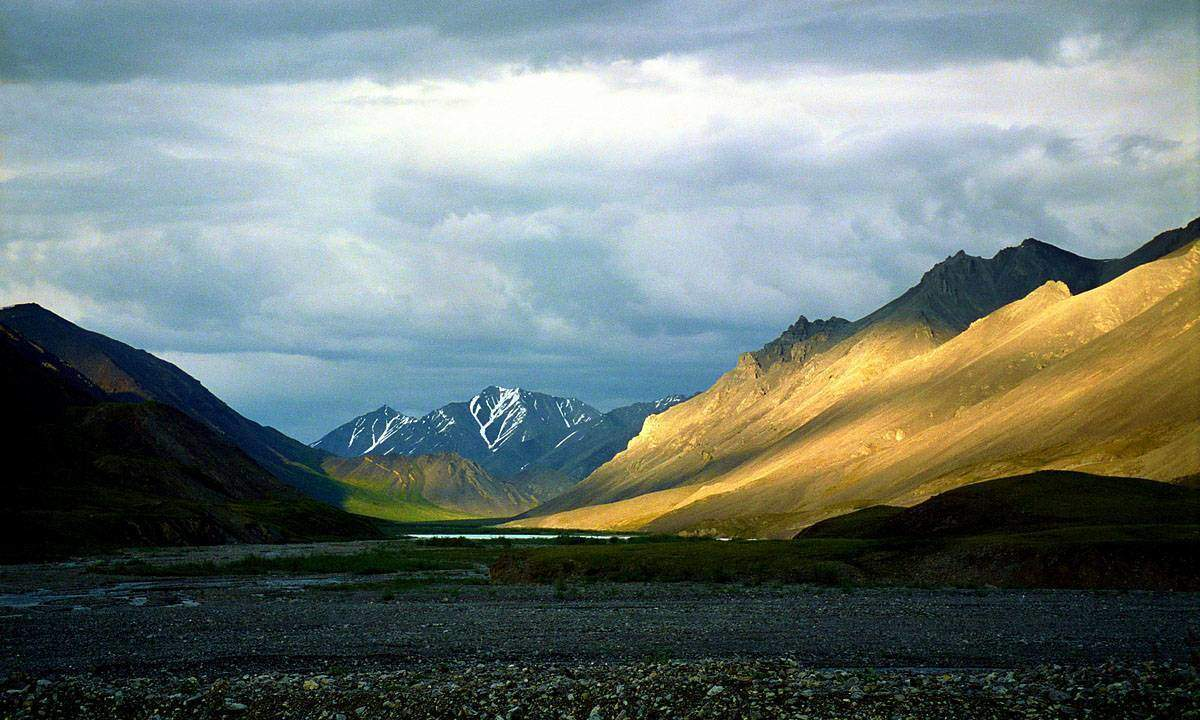 The Arctic National WIldlife Refuge