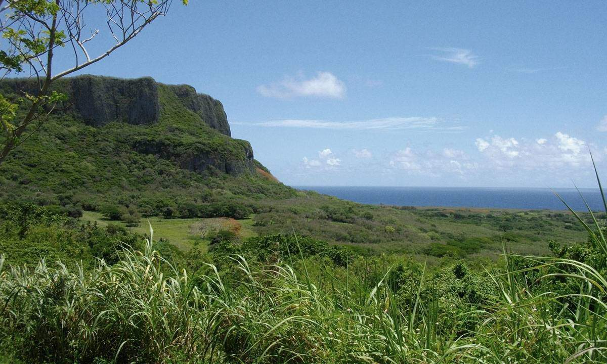 Suicide Cliff in the North Mariana Islands. By English: Abasaa 日本語: あばさー (Own work) [Public domain], via Wikimedia Commons